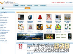 Toys.tradeprince.com - China Toys B2B website to Global Foreigh Trading